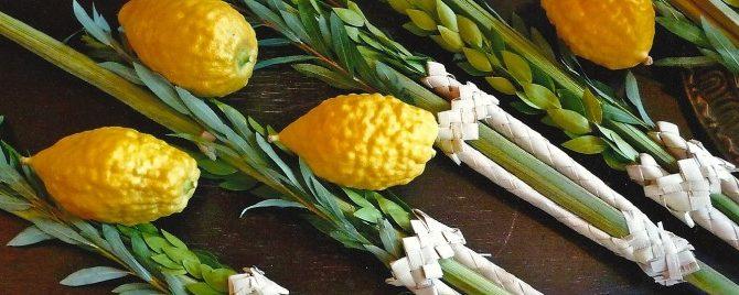 Žydų rudens šventės – kviečiame į paskaitą!