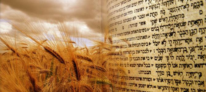 Три смысла праздника Шавуот