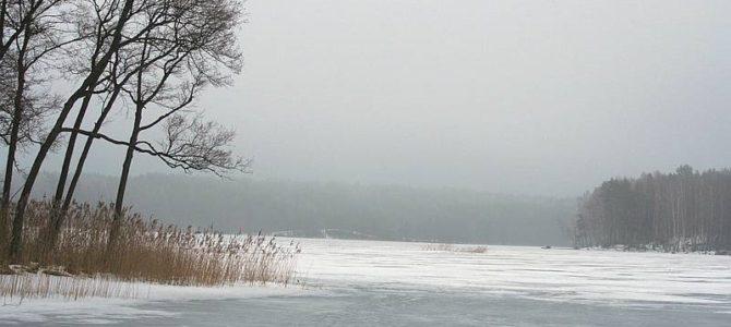 Lietuvos žydų( litvakų) bendruomenė kviečia į SABABA žiemos stovyklą