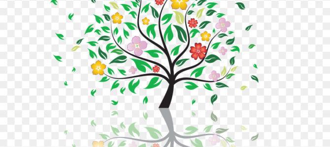 Ту Бишват – Новый год деревьев: «Чем больше фруктов на столе, тем больше благословений принесет нам этот год».