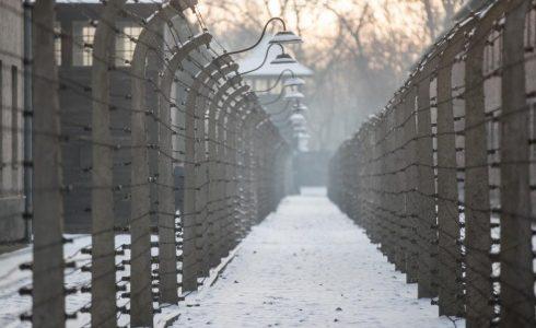 """R. Reches: """"Holokaustas pakeitė išgyvenusiųjų santykį su visu pasauliu"""""""