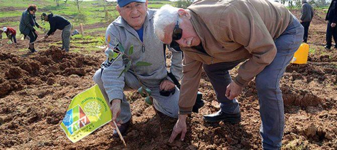 Roman Abramovich to Plant 25,000 Trees in Israel in Memory of Litvaks